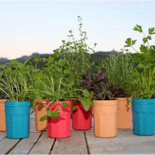 tutoriel diy diy couleurs et senteurs un mur de plantes aromatiques. Black Bedroom Furniture Sets. Home Design Ideas
