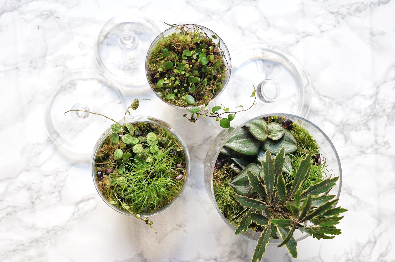 tutoriel diy green upcycling bonbonni res vertes. Black Bedroom Furniture Sets. Home Design Ideas