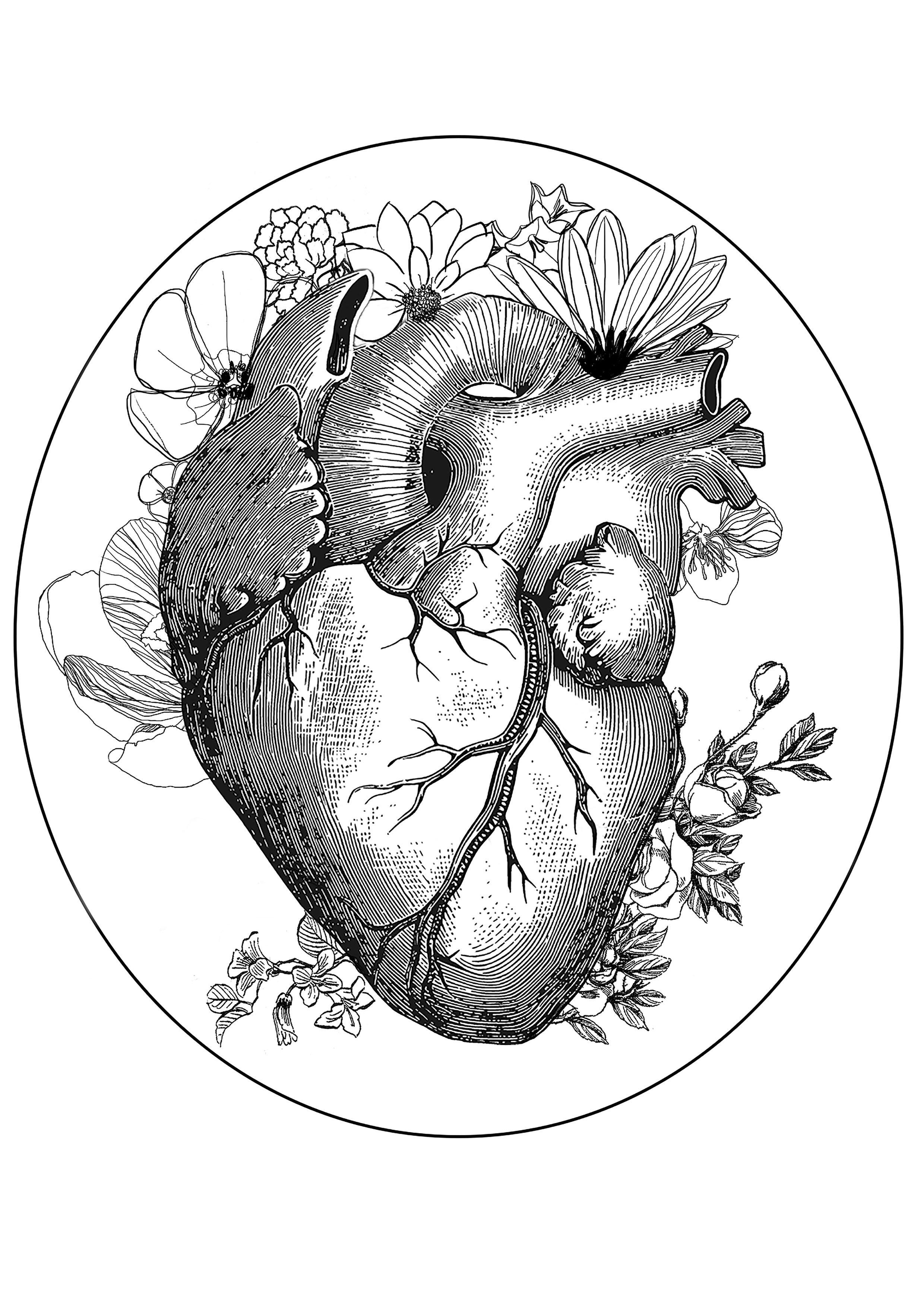Coeur frida