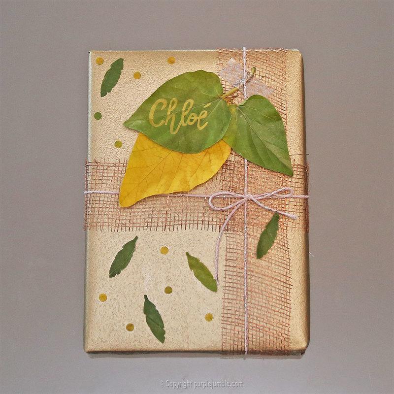 Diy paquet cadeau nature 12