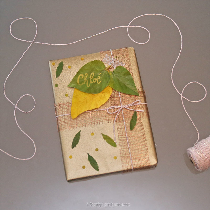 Diy paquet cadeau nature 14