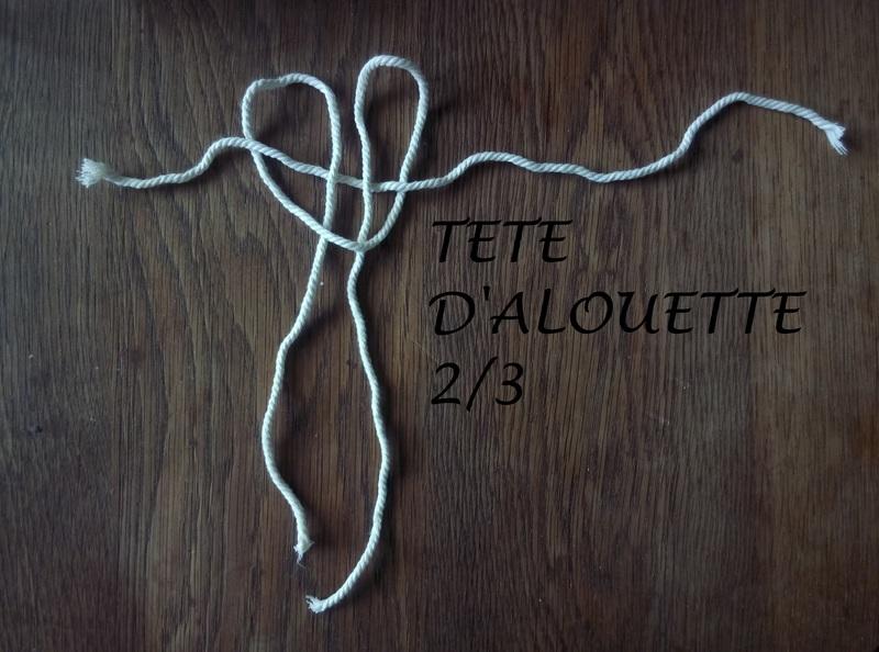 Tete alouette 2