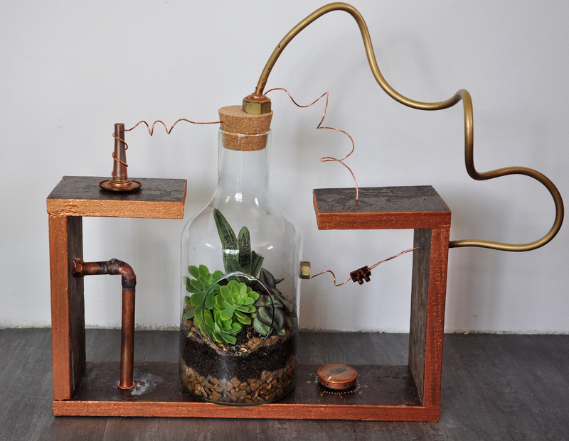 Oam terrarium laboratoire 01