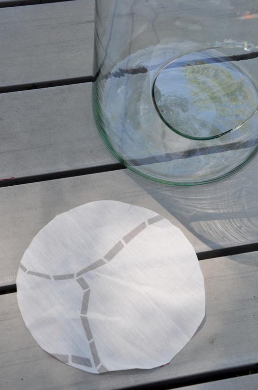Oam terrarium laboratoire 19
