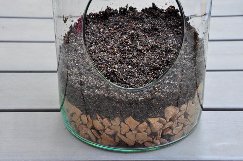 Oam terrarium laboratoire 24