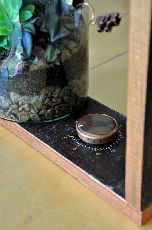 Oam terrarium laboratoire 42