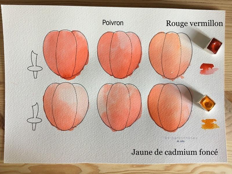 Couleurs poivron