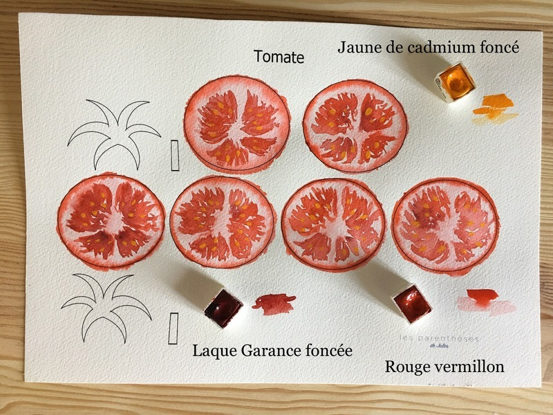 Couleurs tomate